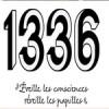 1336, des thés et infusions délicieux et solidaires à découvrir sans tarder !